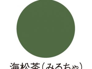 ゴッホアクリルカラー 海松茶 JA30