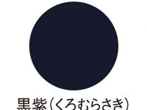 ゴッホアクリルカラー 黒紫 JA32