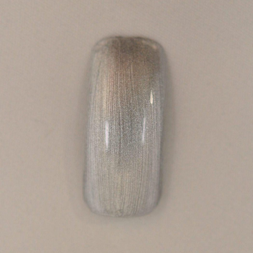 ネイルポリッシュ プレミアムカラー Frost Silver