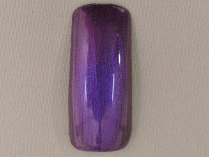 ネイルポリッシュ プレミアムカラー Dark Violet